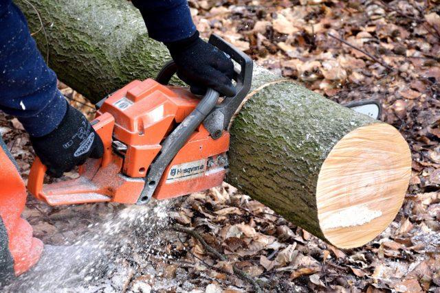 Cięcie drewna – o czym warto pamiętać?